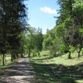 Málnásfürdő - Băile Malnaș