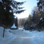 Băile Șugaș - Sugásfürdő